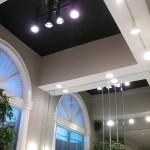 Black Vaulted Ceiling